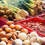 Gajeski Produce